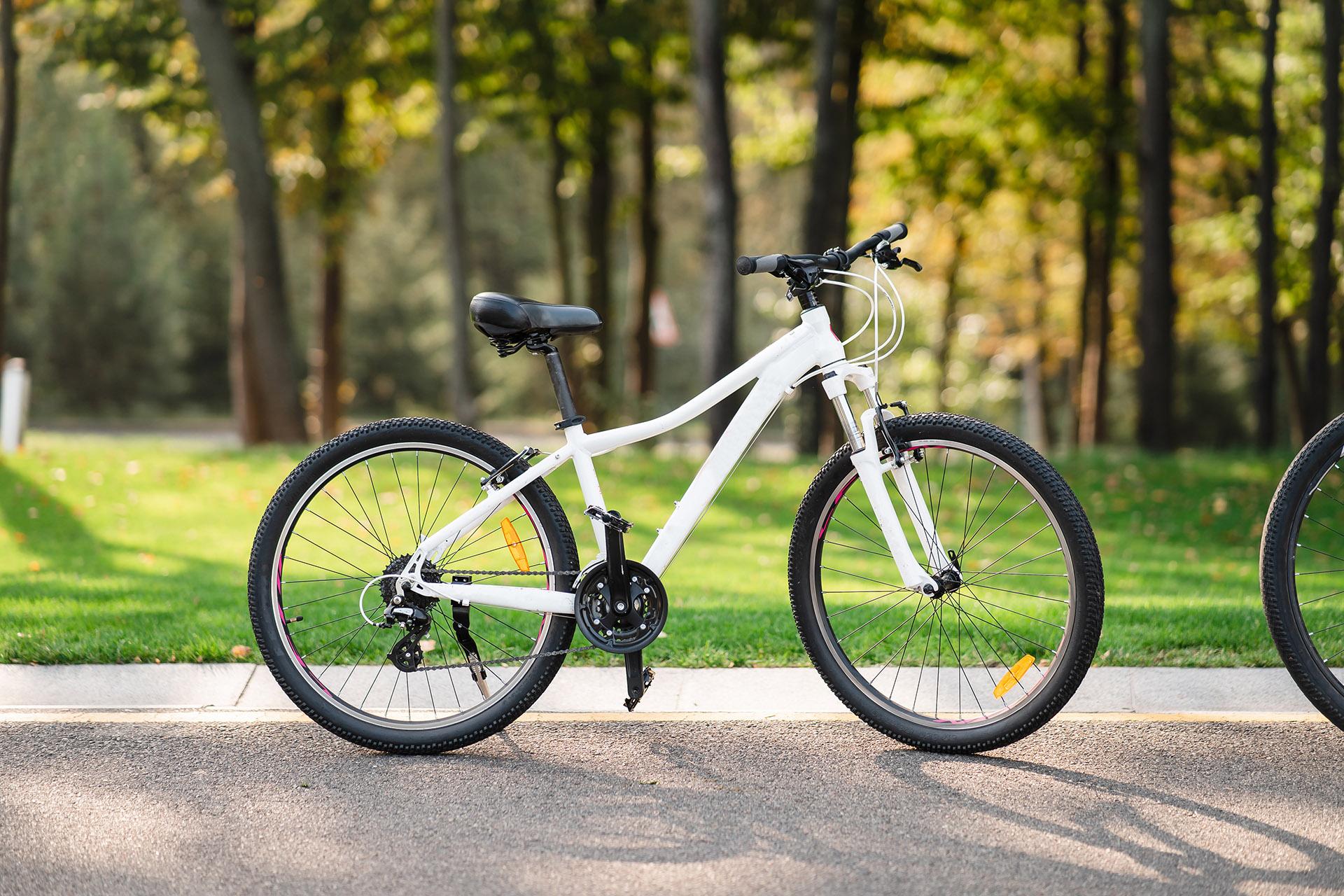 Cele mai Populare Tipuri de Biciclete